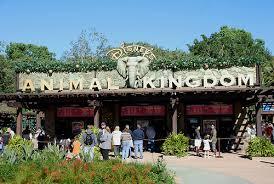 Disnep's Animal Kingdom