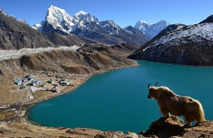 Shigatse-valley-300x195 Mount Everest - Setting Your Sights on The Tallest Mountain
