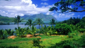The beautiful views
