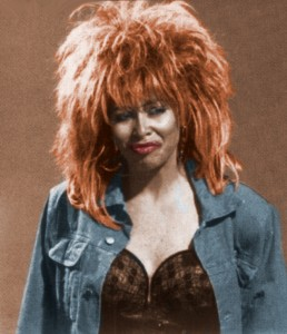 Holly Faris as Tina Turner