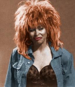 Holly Faris as Tina Turner