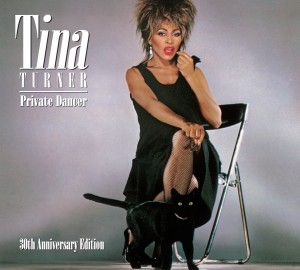 11201012_984746241545816_6895171615726025212_o-300x270 A Superstar for the Ages - The Amazing Tina Turner