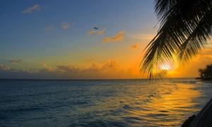 0-300x181 Barbados: Tropical Restoration