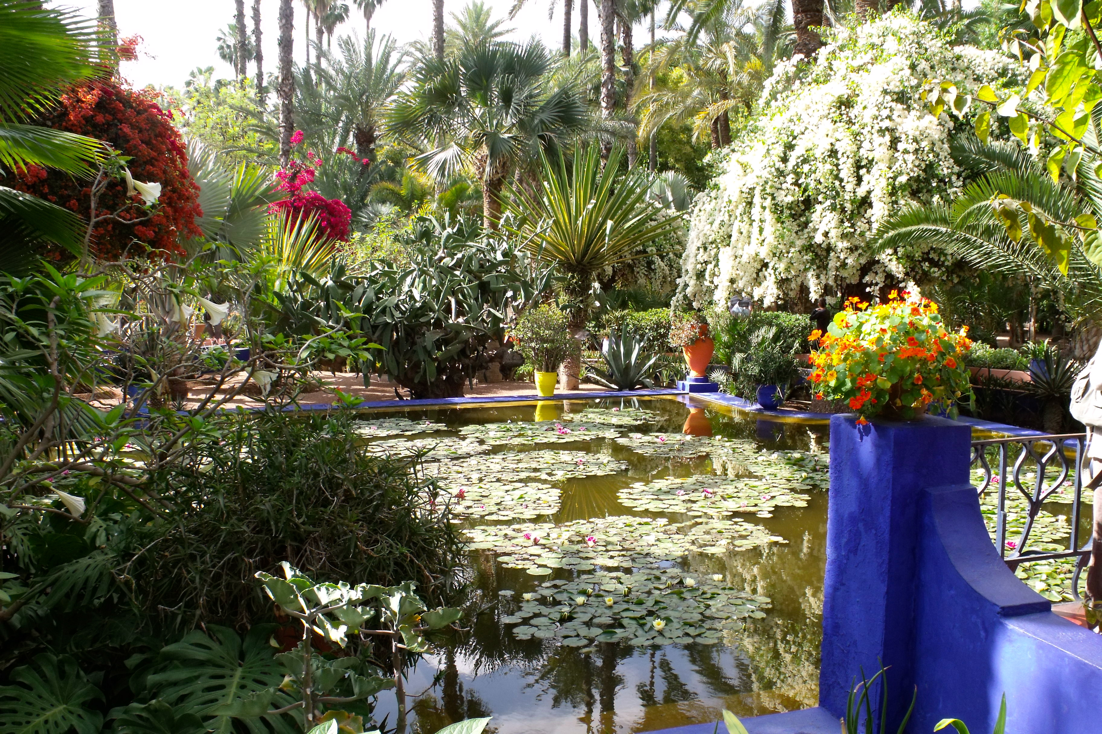 Related keywords suggestions for jardin majorelle marrakech for Jardin ysl marrakech