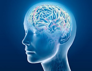 brain-biology-medical-research-biology-300x232 #IAmStigmaFree - The Trends and Traits of Mental Illness Today