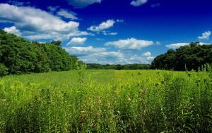Columbia Wildlife Management Area