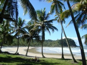 itacare-prainha-one-of-300x225 Visit Brazil and Experience a South American Paradise