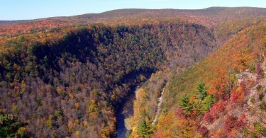 Pine Creek Gorge, PA