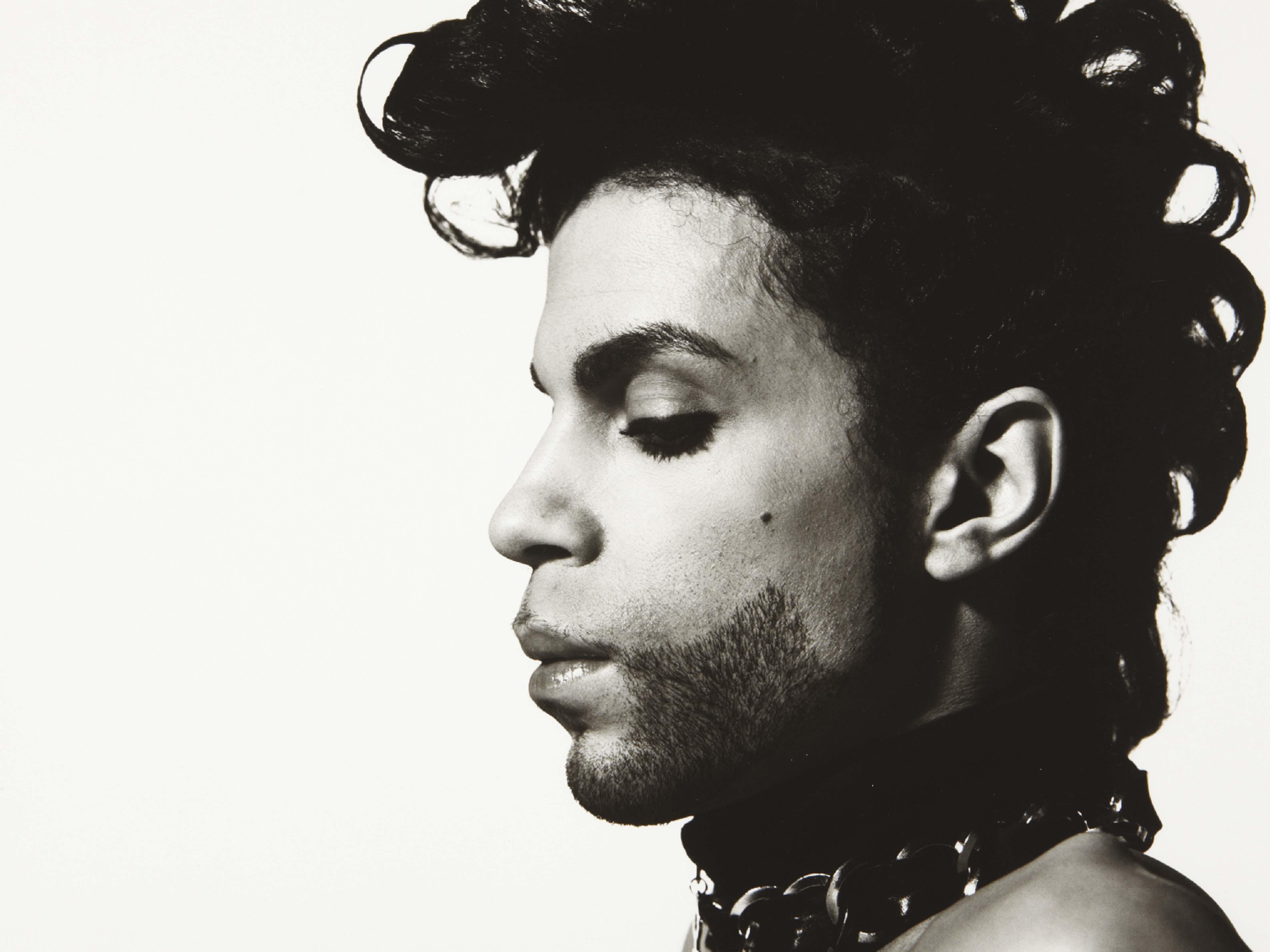 Prince Through The Ages Hooked On Everything