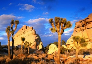 Photo courtesy of National park.com