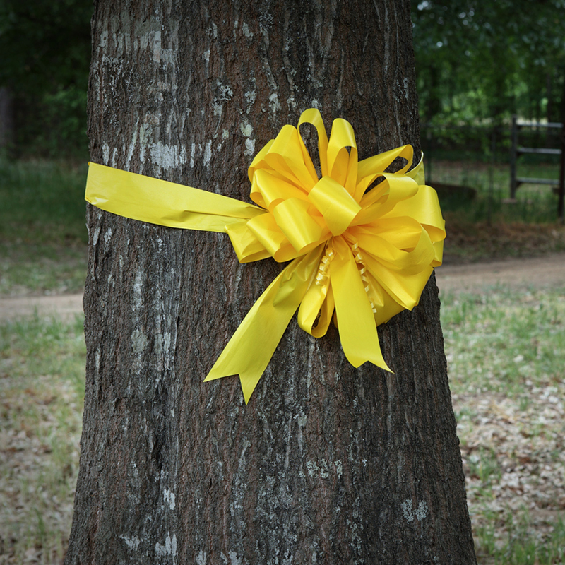 tony-orlando-yellow-ribbon-around-oak-tree Tony Orlando: The Legend that Echoes Through the Ages