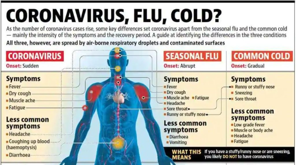 Difference between COVID-19, Common Cold and Flu